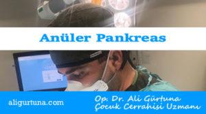Anüler Pankreas hastalığı nedir?