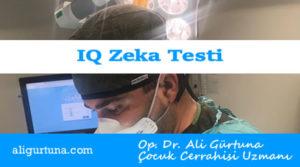 IQ nedir? Zeka testi oyun mudur?
