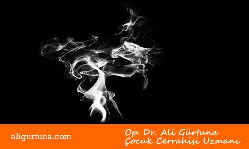 Sigarayı bırakma evreleri, Sigaranın zararları